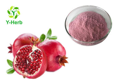 Spray Dried Instant Fresh Pomegranate Juice Concentrate Powder 100% Water Soluble